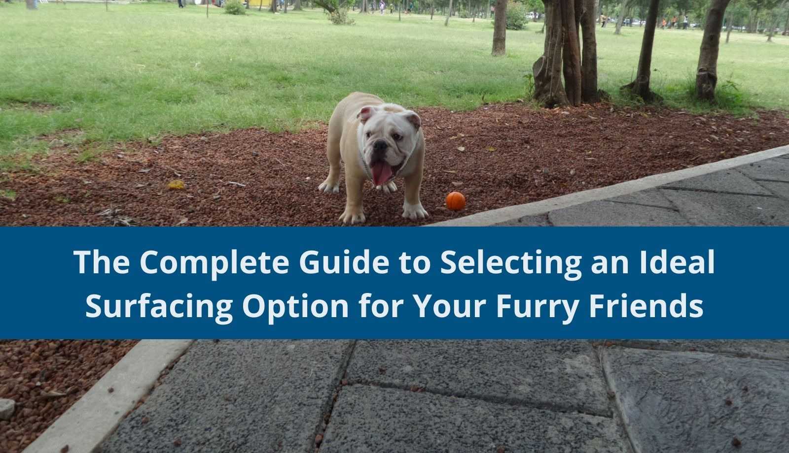 The Complete Guide to Selecting an Ideal Surfacing Option for Your Furry Friends
